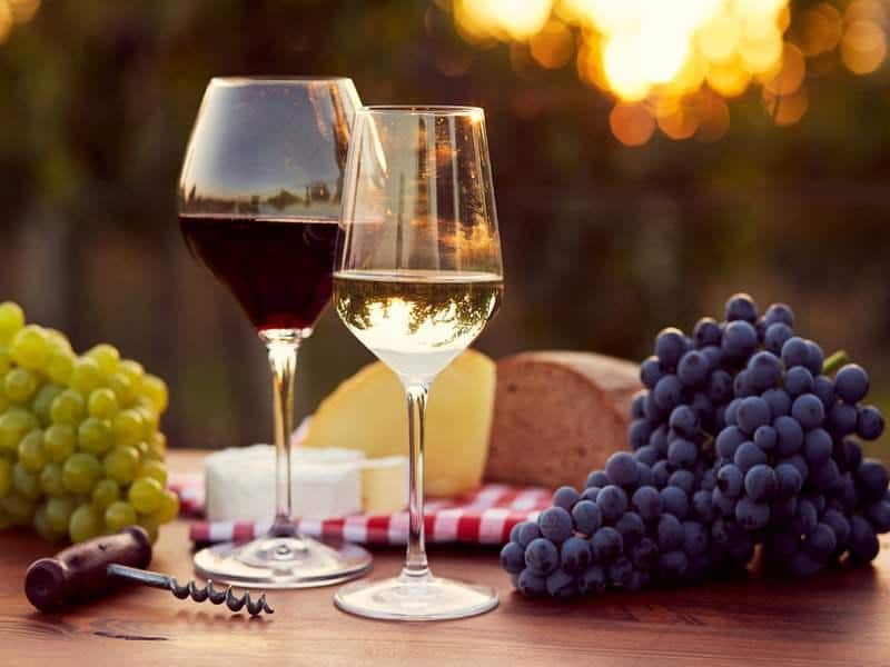Wein - kennen und genießen